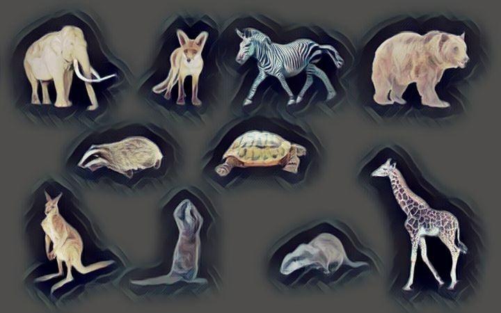 Znaczenie snu Zwierze, zwierzęta